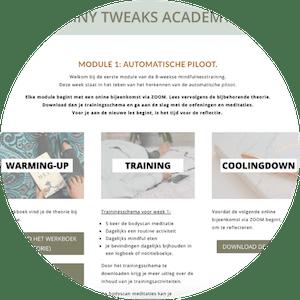 online mindfulness academie